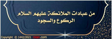 من عبادات الملائكة عليهم السلام : الركوع والسجود